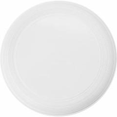 Frisbee - frizbi kot ga poznamo, bela 6456-02